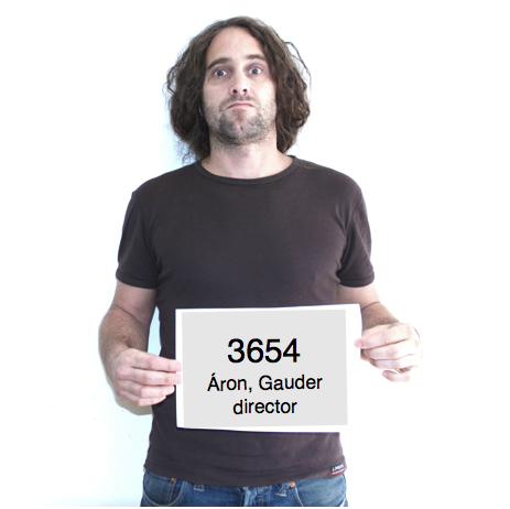GAUDER ÁRON, rendező, animációs szuperfőnök